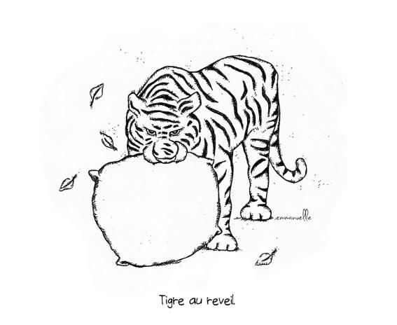 tigre au reveil